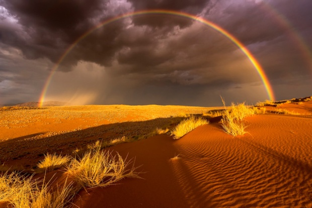 Stefan Forster/ National Geographic Travel Photographer of the Year Contest. Rain in the Desert. Namibrand-Park