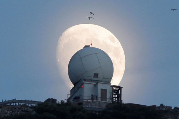 Gibraltar - © REUTERS
