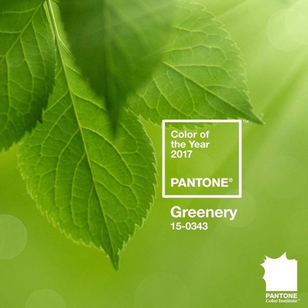 inspirationsgraphiques-graphisme-illustration-tendance-pantone-greenery-jaune-vert-couleur-annee-2016-rose-quartz-serenity-01