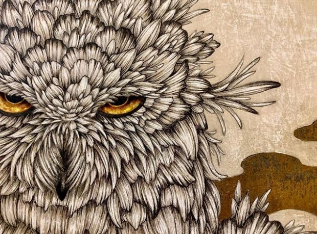 Inspirationsgraphiques-dessin-formation-illustration-artiste-japonais-Manabu-Endo-portraits-stylo-bille-aquarelle-illustrations-plantes-animaux-personnage-02