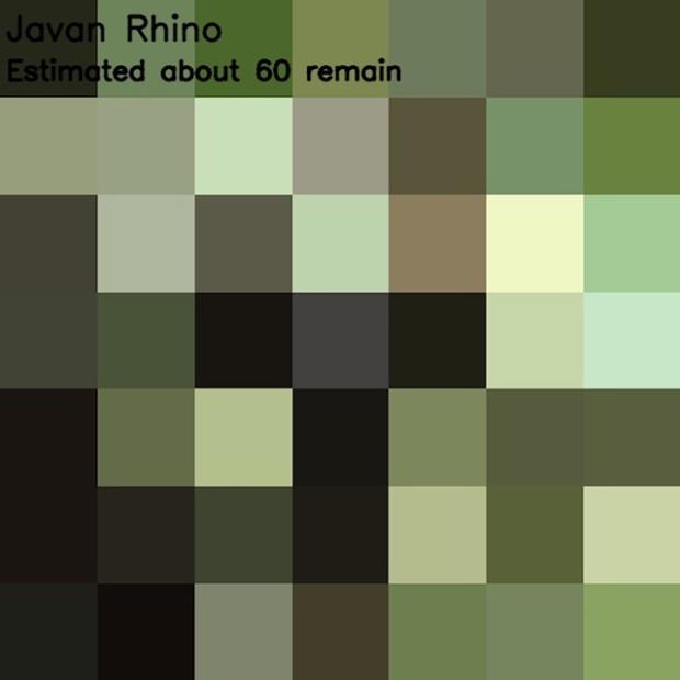 Inspirationsgraphiques-ecologie-WWF-artiste-JJSmooth44-photographie-animaliere-pixel-espece-menacee-preservation-sensibilisation-13
